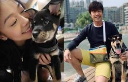 Á hậu Hong Kong 2012 phủ nhận có tình yêu mới