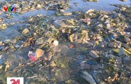 Bãi biển Bình Thuận trở thành bãi chứa hàng tấn rác thải