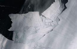 Khối băng khổng lồ rộng hơn 300 km2 tách khỏi Nam Cực
