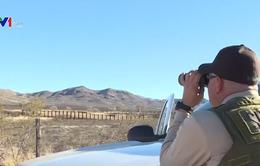 Mỹ tăng cường truy bắt người nhập cư trái phép