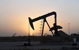 Giá dầu thế giới rơi xuống mức thấp kỷ lục