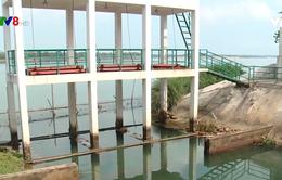 Hạn mặn đe doạ sản xuất vụ Đông Xuân ở Quảng Nam