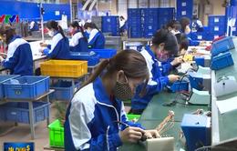 Thu hút đầu tư từ Trung Quốc vào Việt Nam dự báo giảm mạnh vì COVID-19