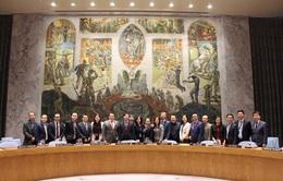 Việt Nam đảm nhận thành công cương vị Chủ tịch Hội đồng Bảo an LHQ tháng 1/2020