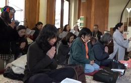 Phật tử kiều bào Pháp dự lễ cầu an đầu năm