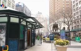 Những nhà vệ sinh công cộng sang trọng ở New York