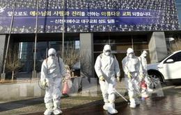 Hàn Quốc: 556 ca nhiễm, thêm 2 người tử vong vì COVID-19