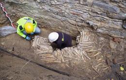 Phát hiện tường xây bằng xương người dưới nền nhà thờ ở Bỉ