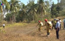 Nguy cơ cháy rừng tại Đồng bằng sông Cửu Long ở cấp cực kỳ nguy hiểm