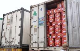 Lượng hàng chờ xuất khẩu tại cửa khẩu phía Bắc ngày càng tăng