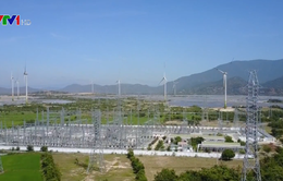 Nghị quyết 55 - Bước đột phá trong phát triển năng lượng quốc gia