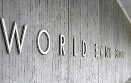 IMF và WB cân nhắc thay đổi hình thức tổ chức các hội nghị mùa Xuân