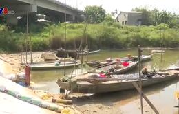 Tình trạng xâm nhập mặn tại Quảng Nam