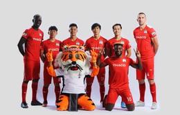 CLB Hoàng Anh Gia Lai lựa chọn linh vật mới là hổ rừng Tây Nguyên