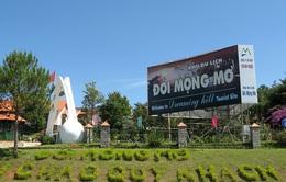 Hơn 260.000 lượt khách đến Đà Lạt dịp Tết Nguyên đán