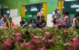 Bàn giải pháp tiêu thụ nông sản
