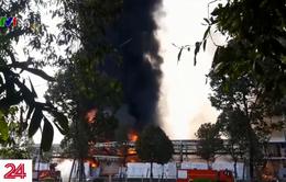 Cháy xưởng sản xuất nệm mút ở Bình Dương