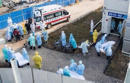 Bỉ xác nhận trường hợp đầu tiên nhiễm virus corona mới