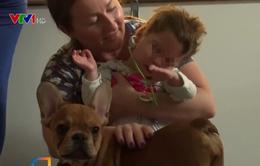 Chó Bull trị liệu, mang niềm vui cho bệnh nhi ở Ba Lan
