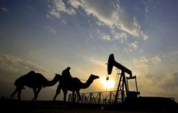 Nga ủng hộ đề xuất tiếp tục cắt giảm sản lượng dầu của OPEC