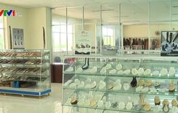 Ngành da giày giảm lệ thuộc nguồn cung nguyên phụ liệu
