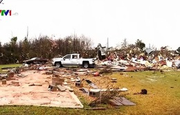 2 người thiệt mạng do bão mạnh tại Mỹ