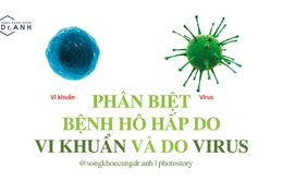 Phân biệt bệnh hô hấp do vi khuẩn và do virus