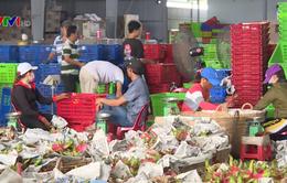 Cộng đồng chung tay tiêu thụ nông sản, ổn định thị trường