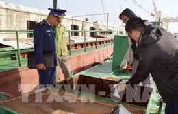Từ 1/5, chủ tàu, thuyền được tự giữ phương tiện vi phạm
