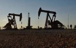 OPEC tiếp tục cắt giảm dự báo nhu cầu dầu mỏ toàn cầu do dịch COVID-19