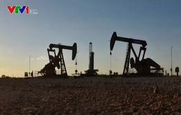 Những kịch bản nào đang chờ đợi thị trường dầu?