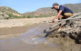 Nguy cơ xảy ra khô hạn, xâm nhập mặn ở Trung Bộ