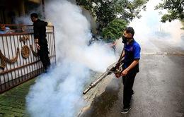 Dịch sốt xuất huyết bùng phát tại Indonesia