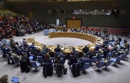 Hội đồng Bảo an quan ngại về nạn khủng bố và bạo lực cực đoan tại châu Phi