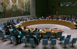 Thông qua Nghị quyết hoan nghênh Thỏa thuận hòa bình giữa Hoa Kỳ và lực lượng Taliban