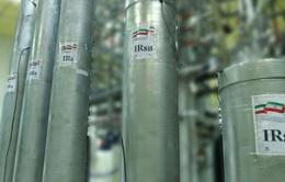 IAEA báo động chương trình hạt nhân của Iran