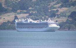 Hàng nghìn hành khách mắc kẹt trên du thuyền ở New Zealand do có ca nghi nhiễm COVID-19