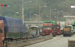 Hoạt động xuất nhập khẩu qua cửa khẩu Lào Cai nhộn nhịp trở lại