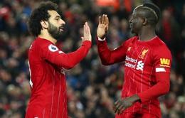 Không phải Salah, đây mới là chân sút hiệu quả nhất Ngoại hạng Anh