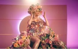 Bà bầu Katy Perry thận trọng hơn giữa đại dịch COVID-19