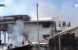 Lâm Đồng: Cháy lớn tại Công ty ươm giống cây trồng Đà Lạt