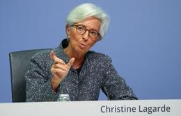 ECB thông qua chương trình khẩn cấp mua trái phiếu 750 tỷ Euro