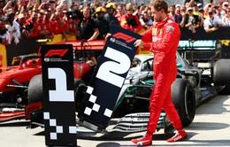 F1: Đội đua Renault muốn chiêu mộ Sebastian Vettel
