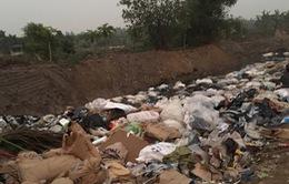 Hải Dương: Điều tra vụ đổ trộm chất thải nguy hại