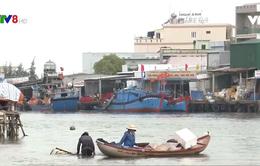 Thiếu quyết liệt trong xử lý các công trình vi phạm hành lang an toàn hàng hải