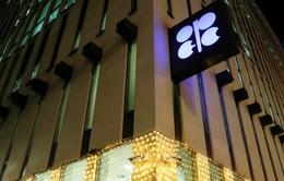 Nga và OPEC bất đồng về vấn đề cắt giảm sản lượng dầu