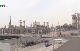 Thị trường dầu mỏ chịu áp lực kép