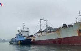 Bắt vụ buôn lậu hơn 4 triệu bao thuốc lá tại vịnh Bắc Bộ