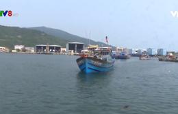 Đà Nẵng: Bắt 5 tàu cá có hành vi đánh bắt trái phép bằng bộ kích điện