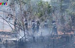 250 cán bộ, chiến sĩ tham gia chữa cháy rừng ở Phú Quốc